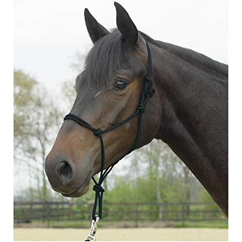 Knotenhalfter STANDARD, Pony/Vollblut, schwarz