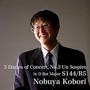 3 Etudes of Concert, No.3 Un Sospiro in D flat Major S144/R5