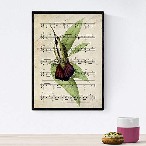 Nacnic Poster de pajaros. Lámina de Colibri con partituras. Cuadros de pajaritos con partituras Musicales. Tamaño A4 con Marco
