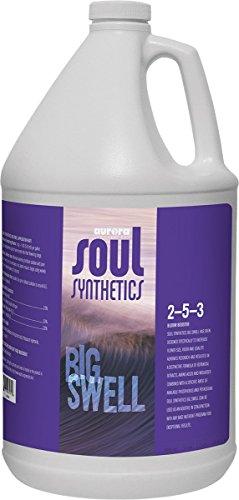 Roots Organics ROSSBSG Soul Synthetics Big Swell Fertilizer, Gallon, 1 Gallon