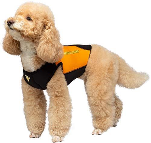 Cressi Dog Neoprenanzug für Hunde (XL)