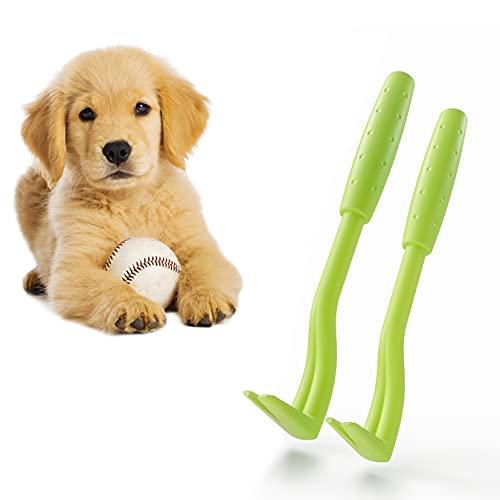 innoGadgets Gancho para garrapatas Pinzas para garrapatas   Diferentes Ganchos para Todos los tamaños de garrapatas   Suave eliminación de garrapatas en Segundos   Verde