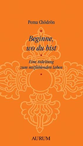 Beginne, wo du bist: Eine Anleitung zum mitfühlenden Leben