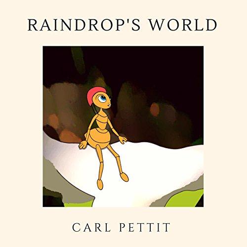 Raindrop's World audiobook cover art