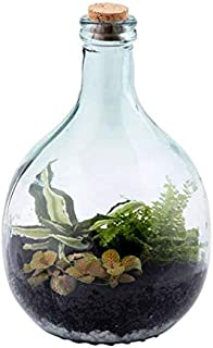 glass bottle for terrarium