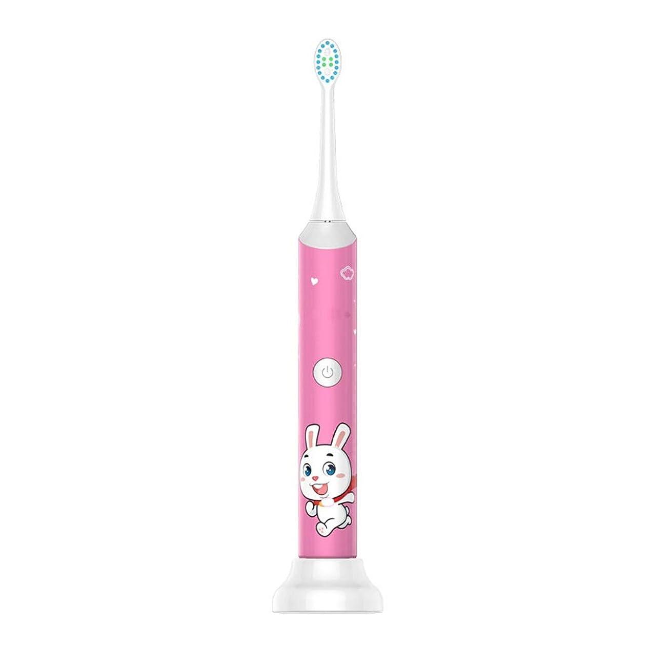 悲劇的な平凡エントリ子供の電動歯ブラシ防水USB充電ベースホルダー柔らかい毛の歯ブラシ歯科医推奨 (色 : ピンク, サイズ : Free size)
