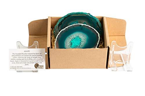 Fossil Gift Shop - Juego de 4 posavasos de ágata (2 unidades), color verde