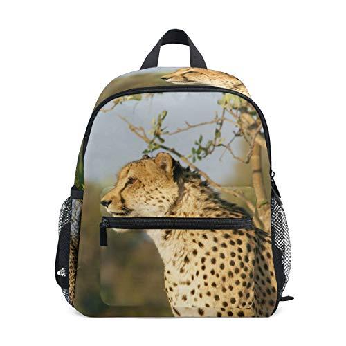 Cheetah Jacht Leopard Wildlife Rugzak voor Meisje Jongen Kleuterschool Tas Kinderen Mini Reizen Dagrugzak Basisschool…