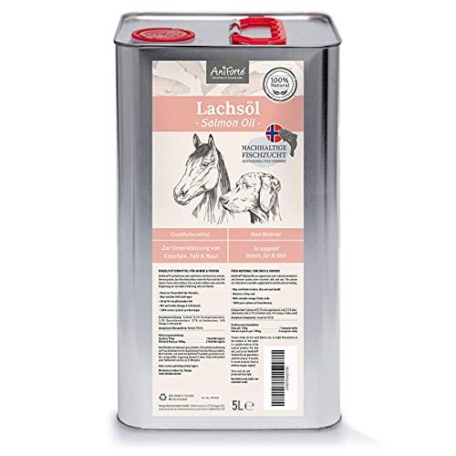 AniForte Aceite de salmón 5 Litros para Perros, Gatos y Caballos. Ácidos grasos Omega 3. Producto puro y Natural. Ideal como complemento alimenticio diario. Suplemento BARF.