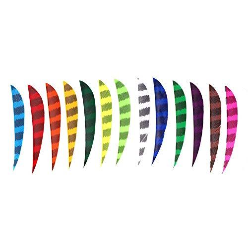 Pluma de Flecha de Tiro con Arco de 13 Piezas, Pluma de Flecha de patrón de Rayas de 5 Pulgadas de Colores para Accesorios de Flecha de Arco de Bricolaje
