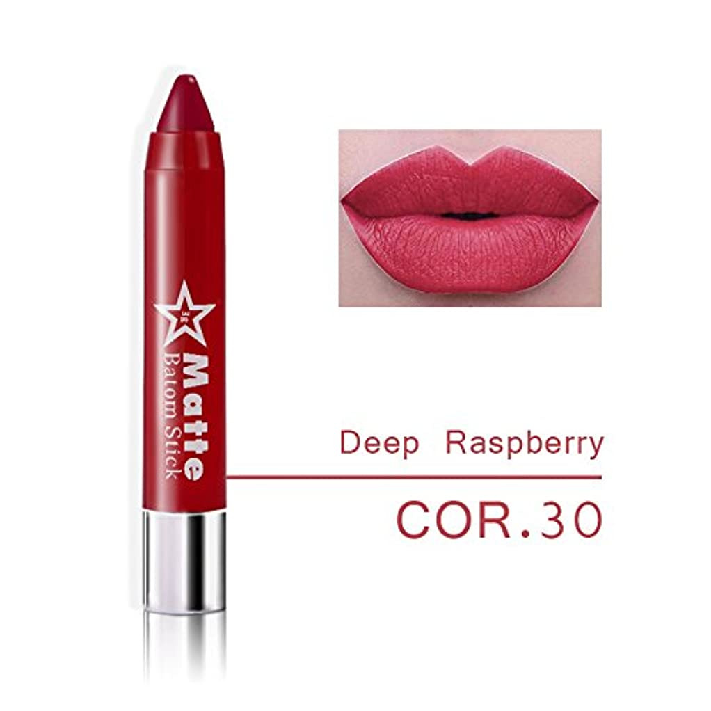 なくなる戸口テロMiss Rose Brand lips Matte Moisturizing Lipstick Makeup Lipsticks Waterproof matte Lip gloss Mate Lipsticks Make up