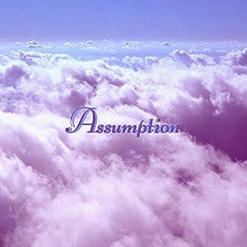 Assumption (feat. Lumelle)