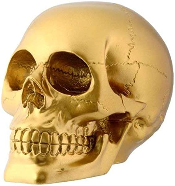 Gold Skull Head Collectible Skeleton Decoration Figurine