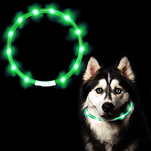 ASANMU LED Hundehalsband Leuchtend, LED Halsband für Hunde Leuchtendes Halsbänder USB Wiederaufladbar Hundeband Nacht Blinkende Sicherheit Halsband Hunde Hundespielzeug für Hunde Welpe Katzen (Grün)
