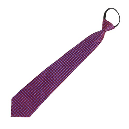 Junlinto Hombres Pre-Atados con Cremallera Ajustable Tie Corbata Plaid Dot Business Formal Wedding Blue Purple