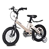 QAZWC-A1 12 14 16 18 Inch Kids Bike Training Wheels for 2-7 Years Old Girls & Boys Quick-Adjust Seat (Color : Gold, Size : 12inch) -  NFJDKE