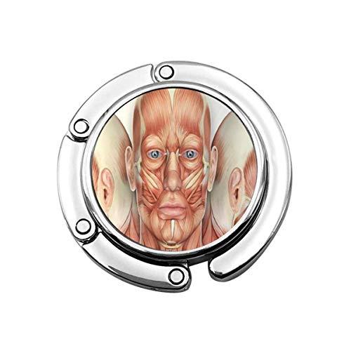 Faltbare Handtasche Kleiderbügel Geldbörse Haken, Gesicht 3D männliche Gesicht Muskeln Anatomie mit Seitenansichten Kopf