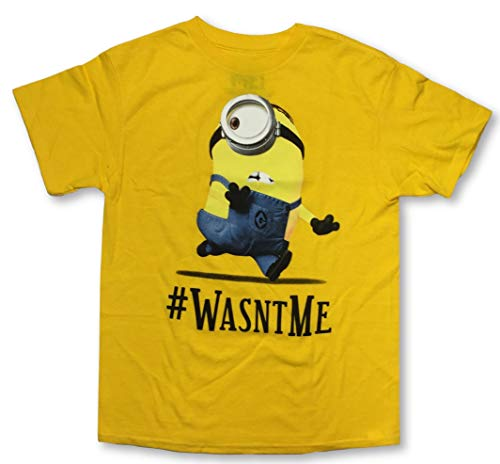 Despicable Me Minions Boys T-Shirts Many Styles (Medium...