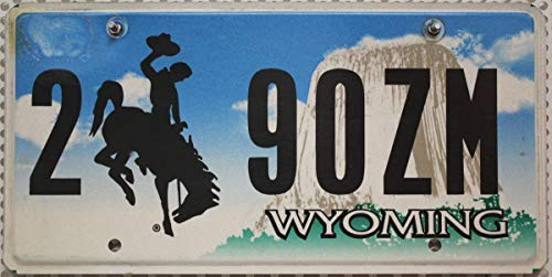 USA_Auswahl_von_Fahrzeugschildern Flaches Wyoming Nummernschild, Metall Kennzeichen, USA Schild mit Motiv Cowboy Rodeo Devils Tower, US License Plate/Blechschild