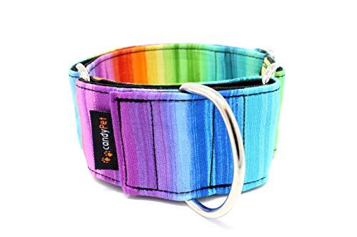Candy Pet Halsband Martingale für Hunde – Modell Regenbogen