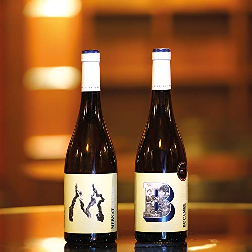 Smartbox - Caja Regalo - Bodegas Tierras de Orgaz: Visita guiada con cata Gourmet de 3 vinos - Ideas Regalos Originales