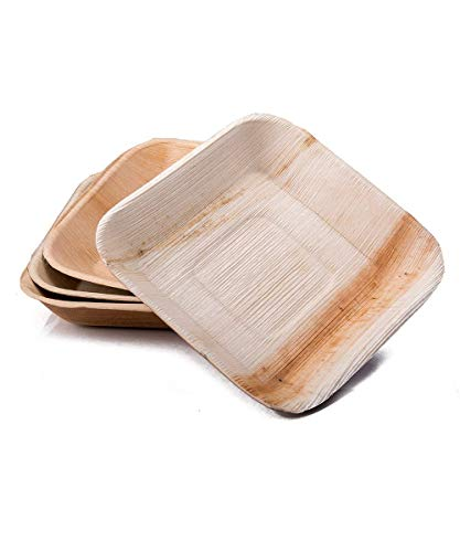 Dtocs Palm Leaf Plates Pack 50, 7 Inch Square | Eco-friendly, Compostable, Natural, Biobased, Organic Disposable Party Plates For Wedding, Camping, Birthday Dinner | Better Than Bamboo, Paper Plates.