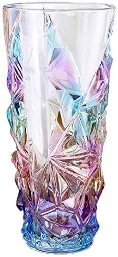 Home Decoration gekleurd Doorzichtig glazen vaas bloemen Flower Inserter for Home Decoration zonder bloemen (Color : Large)