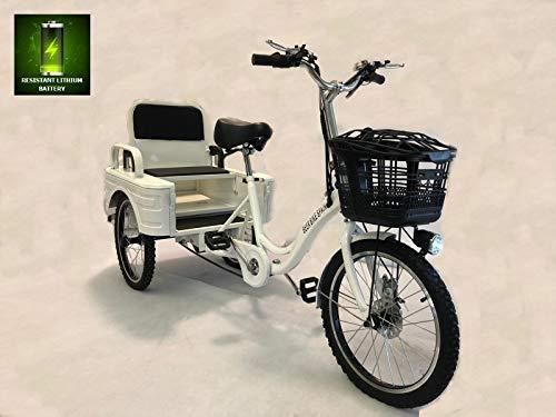 Elektrisches Dreirad für Erwachsene, 250 W, 12 Ah, mit Transportbox