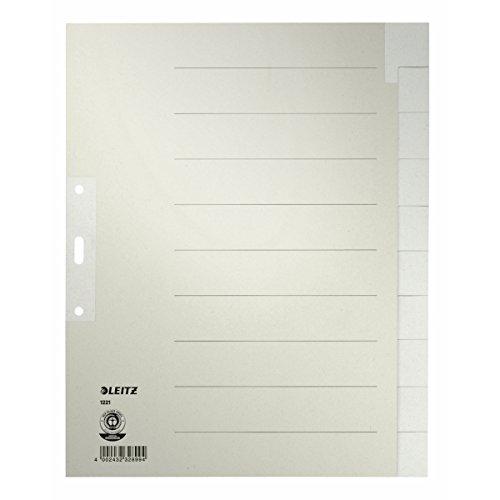 Esselte Leitz Papierregister Blanko, A4, Papier, 10 Blatt, grau