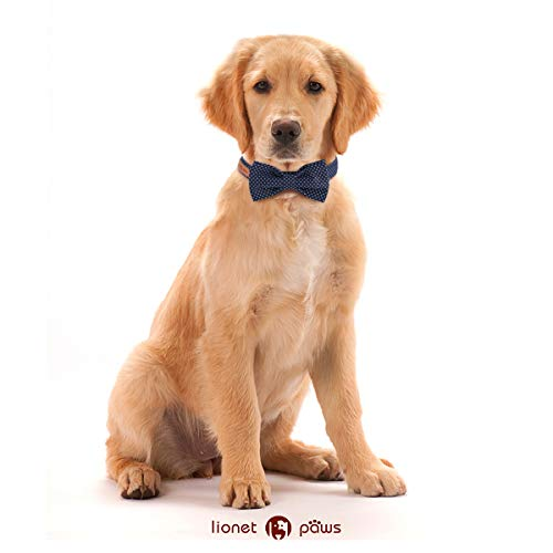 Lionet Paws Dog and Cat Collar with Bowtie,Soft and Comfortable,Adjustable Collar