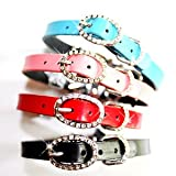 Oval Buckle Leather dog collar with Swarovski Crystals