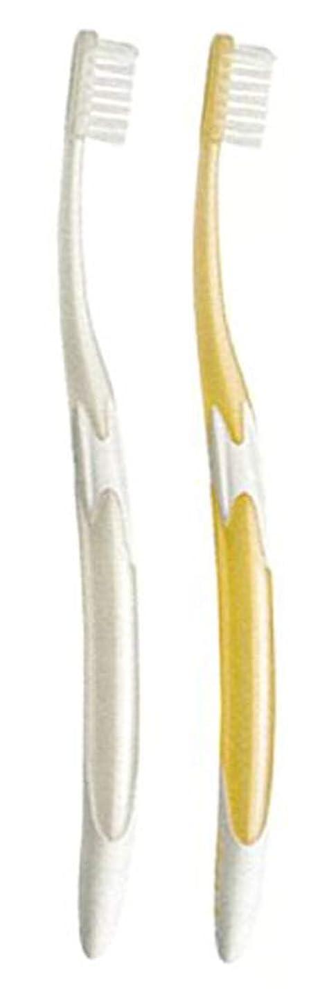 分類する粘土長椅子ジーシー GC ルシェロ W-10 歯ブラシ 3本 (ハンドルカラーお任せ)