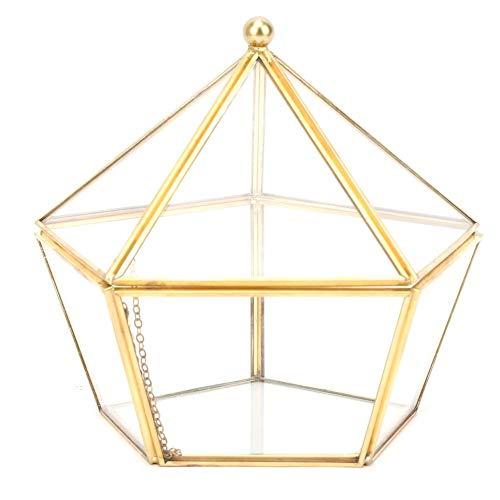 HERCHR Globi Terrari in Vetro Piante Grasse Portafiori per Fiori Decorazione Geometrica