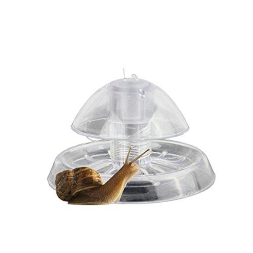 DIAMOEN Acquario Fish Tank di plastica Lumaca Trappola Catcher Leech gamberetti Worm Cattura Natura Cleaner