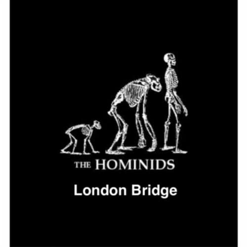 The Hominids