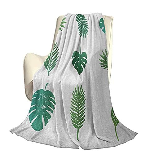 Palm Tree Fluffy Plush Soft Comfortable Warm blanketTropical Paradise Island Nature Theme Colección Dibujada a Mano Follaje de Palmeras Aire Acondicionado de Lujo Funda nórdica W80 x L60 Inc