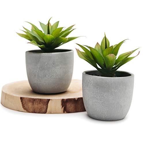 Two Agave in Pale Grey pots - Set of 2 feaux Succulents in Pale Gray Paper Mache Cement pots, 5' x 4' Artificial Plant in Concrete Cement Pot, Beautiful Feaux Plant for Home Decor