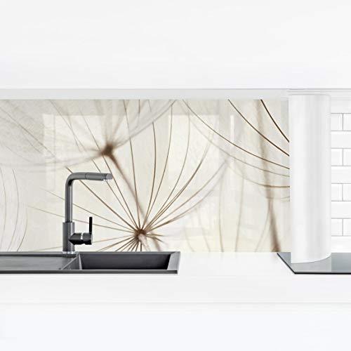 Bilderwelten Küchenrückwand Panorama Folie selbstklebend - Sanfte Gräser Premium 50 x 175 cm