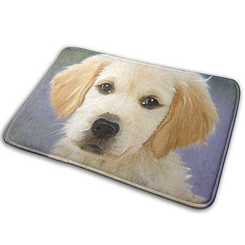 Sheho Gemälde Hund Golden Retriver Gesicht Vertrauen Welpen Welpen Teppiche Teppich rutschfeste Boden Eingänge Outdoor Indoor Vordertür Matte, 60x40cm