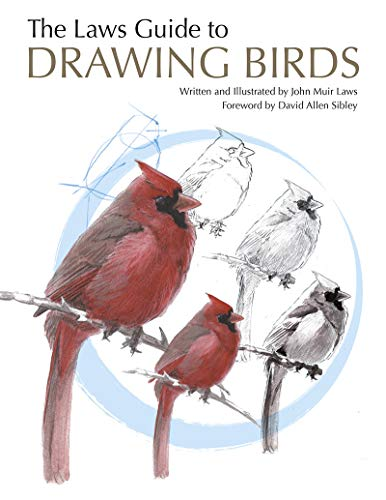 The Laws Guide to Drawing Birds (English Edition)