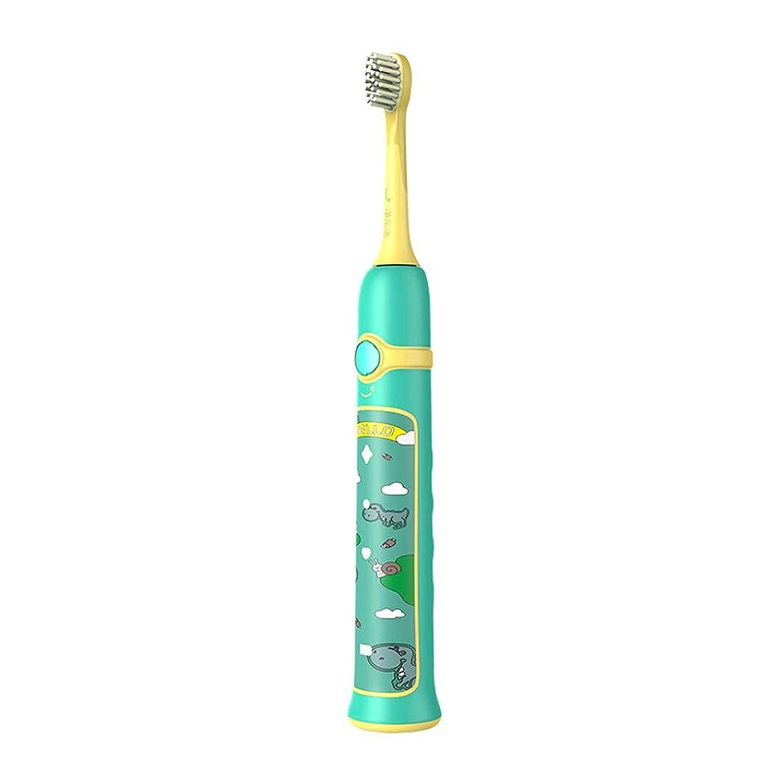 壁スコットランド人放つ超音波電動歯ブラシ成人5速誘導充電歯ブラシ