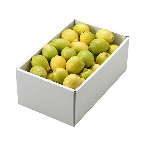 レモン 倉敷レモン 赤秀 2L〜M 2.5kg 岡山県 倉敷産 れもん 檸檬