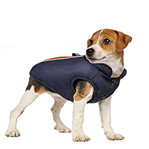 rabbitgoo Manteau Chien Impermeable pour Hiver