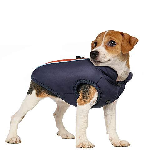 rabbitgoo Hundemantel Hundejacke Winter Wasserdicht Warm Mit Fleece Reflektierend für Klein Hunde Welpen Winddicht Wintermantel Hundeweste M