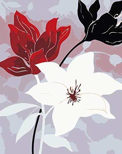 KSKD Peinture par Nombre Kits Avec Brosses et Peintures pour Adultes Enfants Seniors Junior Débutant Acryliques sur Canevas 3 fleurs de couleur- 16x20 pouces avec cadre