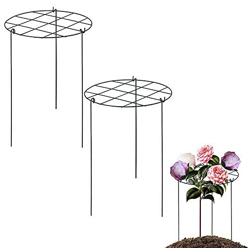 Hanlin 2 Pack Flower Support Rings, 23 inch Peony cage Plant Support Stake, Grow Through Grid Plant Brace, Hoops with 3 Pcs Legs for Heavy Blossoms