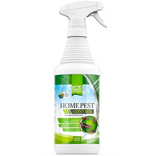 Eco Defense USDA Biobased Pest Control Spray - Ant, Roach, Spider, Bug Killer and Repellent - Natural Indoor & Outdoor Bug Spray - Child & Pet Friendly (32 oz)