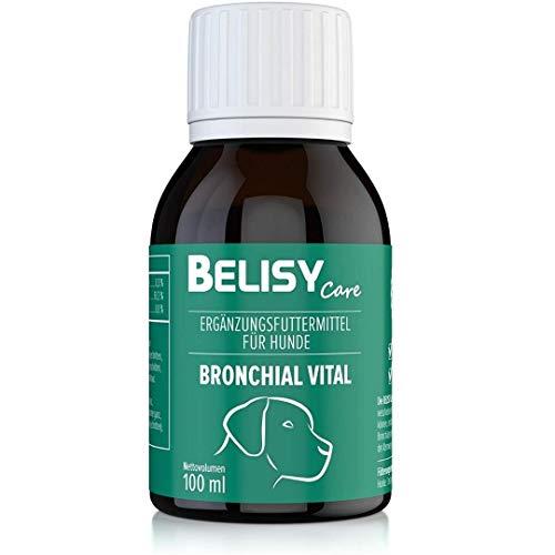 BELISY > Bronchial Vital < 100 ml Hustensaft für Hunde - Kräuter Auszug mit Spitzwegerich, Echinacea, Thymian & 10 weiteren Atemwegskräutern - Hergestellt & Laborgeprüft in Deutschland