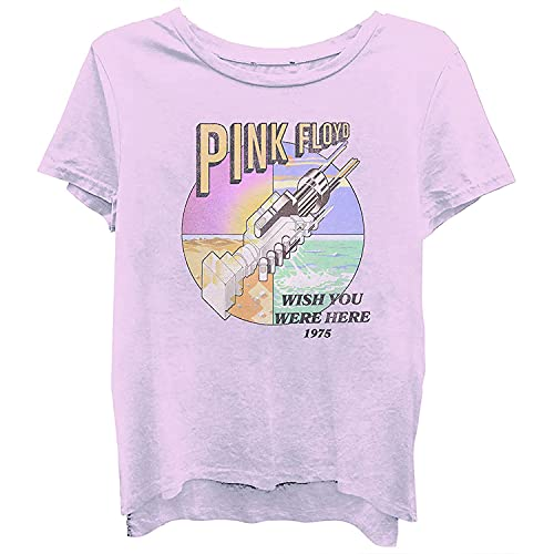 Pink Floyd Ladies Rock Shirt Dark Side of The Moon Vintage Tee (Washed Light Pink, Small)