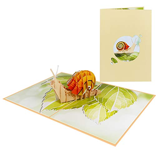 Pop Up Karte 3D Tiere Geburtstagskarte Glückwunschkarte Wald Garten - Schnecke 019
